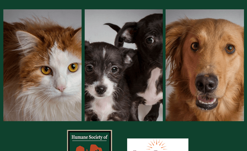 HUMANE SOCIETY OF SEDONA AND POCO DIABLO RESORT TEAM UP TO MAKE A DIFFERENCE FOR SHELTER PETS