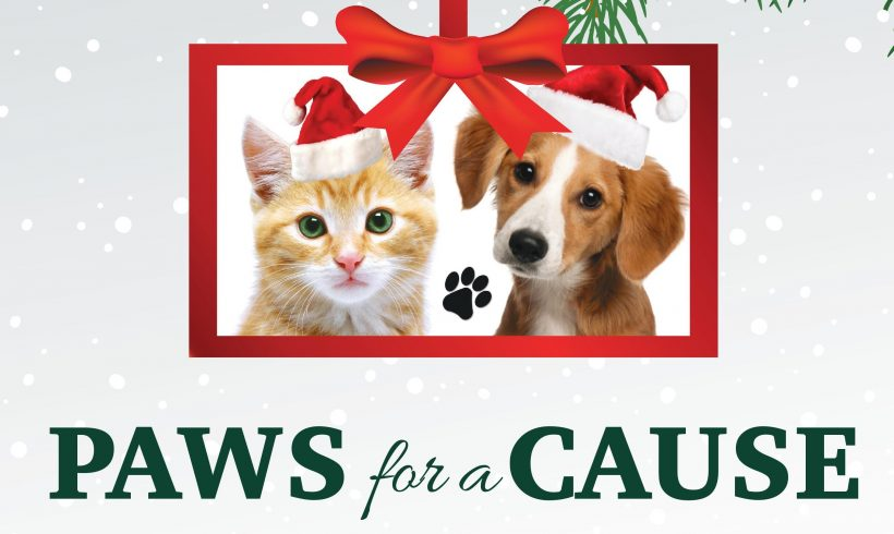Stewart Title Holiday Drive for the Animals