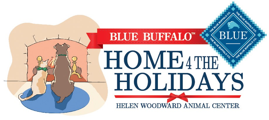 Press Release:  Help Find Homes for the Holiday