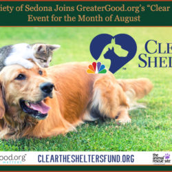 "Press Release:  Humane Society of Sedona Joins GreaterGood.org's ""Clear the Shelters"" Event for the Month of August"