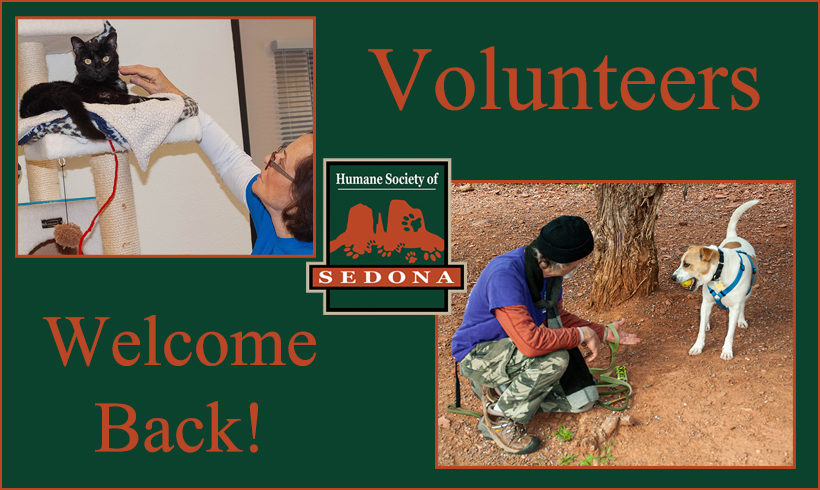 Press Release:  Welcome Back Volunteers
